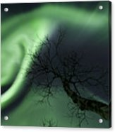 Northern Lights In The Arctic Acrylic Print by Arild Heitmann