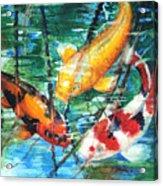 November Koi Acrylic Print by Patricia Allingham Carlson