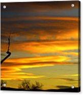 November Sunset Acrylic Print by James BO  Insogna