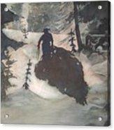 O Tannenbaum Acrylic Print by Elizabeth Carr