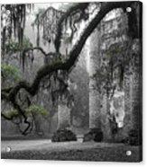 Oak Limb At Old Sheldon Church Acrylic Print by Scott Hansen
