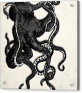 Octopus Acrylic Print by Nicklas Gustafsson