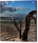 Ode To The Estuary Acrylic Print by Kym Clarke