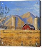 Old Vineyard Dairy Farm Acrylic Print by Jeff Brimley