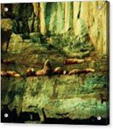 On The Rocks Acrylic Print by Helen Carson