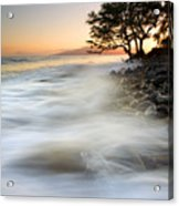 One Against The Tides Acrylic Print by Mike  Dawson