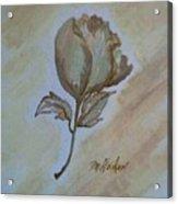 One Rose Acrylic Print by Marsha Heiken