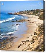 Orange County California Acrylic Print by Paul Velgos