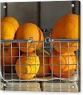 Orangey Acrylic Print by Dan Holm