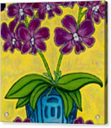 Orchid Delight Acrylic Print by Lisa  Lorenz