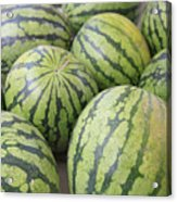 Organic Watermelon Acrylic Print by Wendy Connett