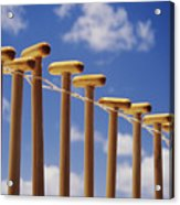 Paddles Hanging In A Row Acrylic Print by Joss - Printscapes