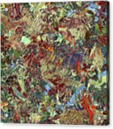 Paint Number 21 Acrylic Print by James W Johnson