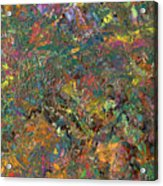 Paint Number 29 Acrylic Print by James W Johnson