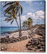 Palms At Lapakahi Acrylic Print by Al Andersen