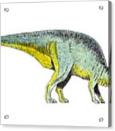 Parasaurolophus Acrylic Print by Michael Vigliotti