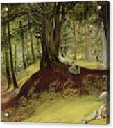 Parkhurst Woods Acrylic Print by Richard Redgrave