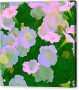 Pastel Flowers Acrylic Print by Tom Prendergast