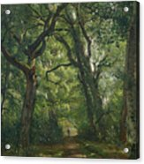 Path In The Forest Acrylic Print by Henri Joseph Constant Dutilleux