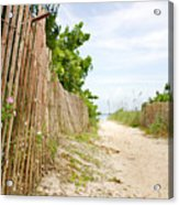 Path To The Beach Acrylic Print by Matt Tilghman
