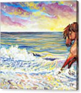 Pawing The Surf Acrylic Print by Jenn Cunningham
