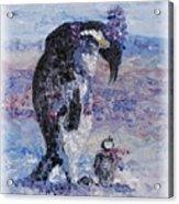 Penguin Love Acrylic Print by Nadine Rippelmeyer