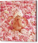 Peony Angel Acrylic Print by Anne Geddes