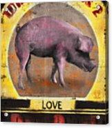 Pig Out Acrylic Print by Joel Payne