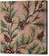 Pine Cones And Spruce Branches Acrylic Print by Nancy Mueller