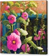 Pink Hollyhocks Acrylic Print by Candy Mayer