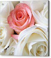 Pink Rose Among White Roses Acrylic Print by Garry Gay
