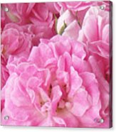 Pink Acrylic Print by Tom Romeo