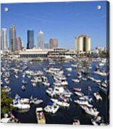 Pirate Invasion 2012 Acrylic Print by David Lee Thompson