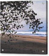 Pools Beach Acrylic Print by Sarah Lynch