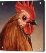Portrait Of A Rooster Acrylic Print by James W Johnson