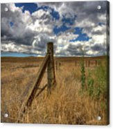 Prarie Sky Acrylic Print by Peter Tellone