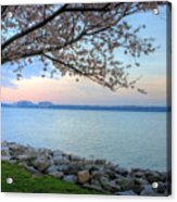 Pretty Potomac Acrylic Print by JC Findley