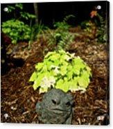 Private Garden Go Away Acrylic Print by Douglas Barnett