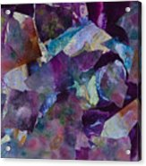 Purple Passion  Acrylic Print by Don  Wright