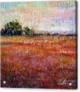 Quiet Over The Field Acrylic Print by Peter R Davidson