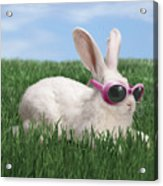 Rabbit With Sunglasses Acrylic Print by George Caswell