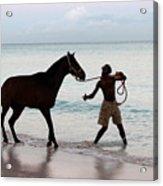 Race Horse And Groom 1 Acrylic Print by Barbara Marcus