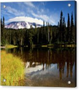 Rainier Capped Acrylic Print by Mike  Dawson