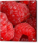 Raspberries Acrylic Print by Mark Platt
