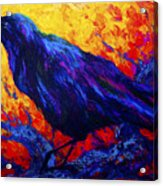 Raven's Echo Acrylic Print by Marion Rose