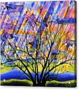 Rays Of Life Acrylic Print by Rollin Kocsis