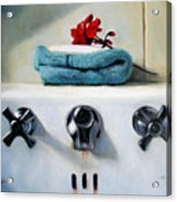 Red Geranium And Old Sink Acrylic Print by Linda Jacobus