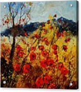 Red Poppies In Provence  Acrylic Print by Pol Ledent