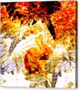 Red Rabbit Acrylic Print by Robert Ball