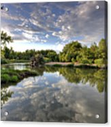 Reflection On The Poudre River Acrylic Print by Shane Linke